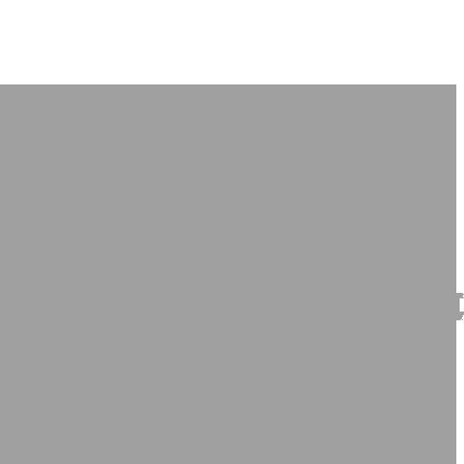 icon-organiz